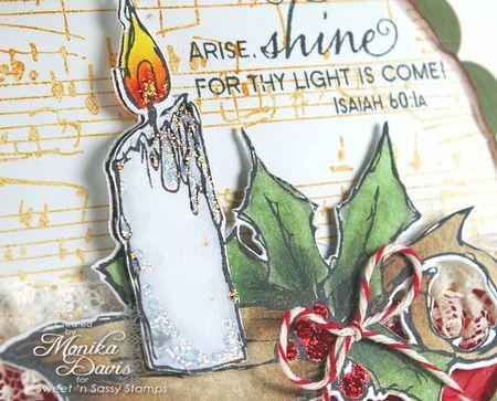 SNS-Christmas Light-circle2
