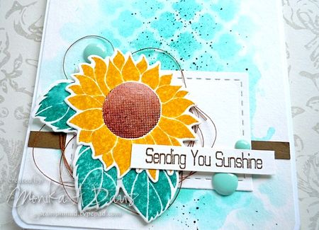 ClearlyBesottedSunflowerSurprisecloseup