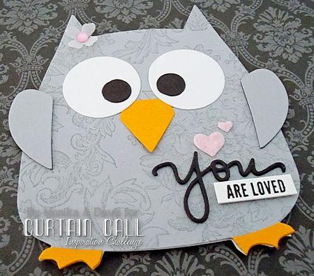 OwlGraycloseup