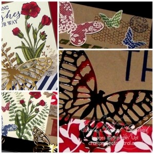 Family-Established-Shadow-Box-Card-Collage-SP-300x300