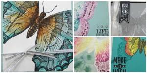 Swallowtail-Card-Set-Box-SP-300x150