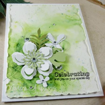 BotanicalGardenGreencloseup