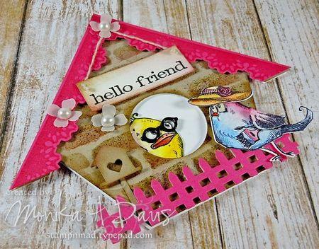 BirdCrazyBirdhousecloseup